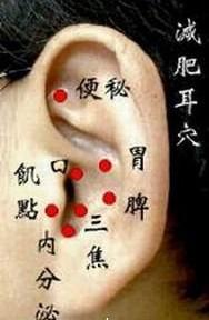 中医减肥的按摩耳穴治疗图解