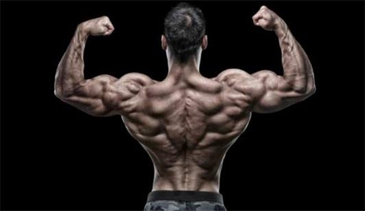 中医减肥加上合理锻炼能够拥有的背部轮廓图片